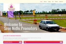 Sreenidhi-Promoters